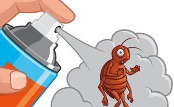как избавиться от тараканов в доме самый эффективный способ